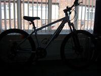 dawes xc16 mountain bike