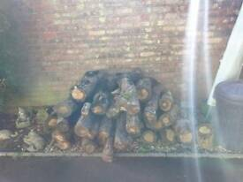 Oak logs, over 1 year old