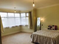Cosy Double Room available now