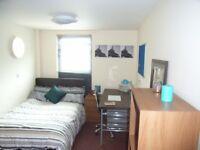1 Bedroom rooms available, En-suite or Shared. BD1, BD7, BD8. £280pcm. All Bills Included.