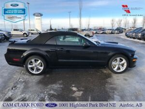 2008 Ford Mustang GT Convertible [leather/V8/manual]