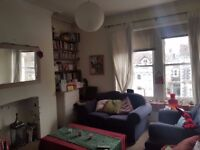 Spare room in 2-bed spacious flat, Redland, available permanently or for sublet