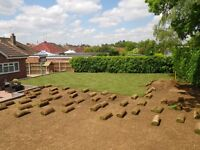 TURF SUPLLIES & LAYING, NORWICH, NORFOLK & SURROUNDING AREAS