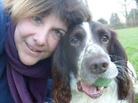 Beetley & Dereham Dog Walking and Pet Sitting Services