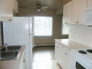 Newly renovated bachelor for $783 with free Telus high speed int Edmonton Edmonton Area image 3