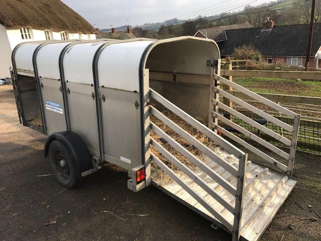 Ifor Williams P8g Livestock Trailer In Crediton Devon
