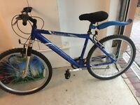Raleigh Freeride mountain bike