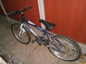 Dunlop Velocity Mountain Bike (Junior)