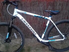 Cannondale trail 6 29er