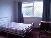 Double Room in houseshare