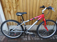 "MOUNTAIN BIKE.""RALEIGH ATV5"" MOUNTAIN BIKE.GREAT CONDITION. ALL FULLY WORKING."