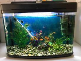 Fish Tank etc