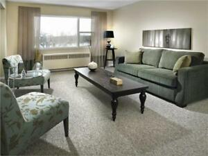 Baywood Park - 1 Bedroom Apartment for Rent