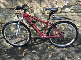 Great Teenager's bicycle - Brand New - Reluctant Sale