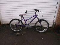 girls apollo mountain bike in full working order
