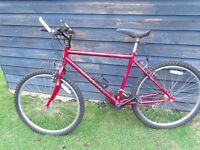 "Boy's bike Raleigh 'Avalanche' 26"" wheels. Good condition"