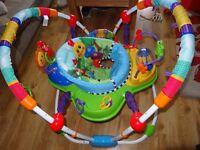 Baby Einstein Activity Bouncer