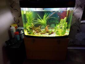 fish pod 160 litre fish tank full set up
