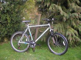radford morgan 22 in frame aluminium,front suspension,21 speed,magnificent bike