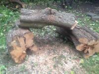 Free logs and burning wood