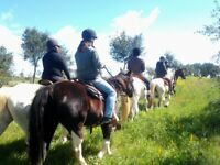 Equestrian holidays in Portugal