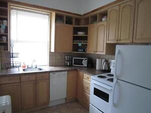 MCGILL GHETTO-1 MONTH FREE RENT-DUROCHER-RENOVATED, HEATED 4 1/2