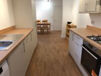 Spacious 1 bedroom flat in New Cross dss with guarantor accepted