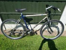 Carrera instinct mountain bike one of many quality bicycles for sale