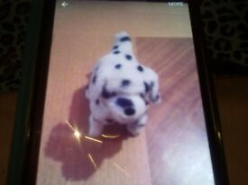 Walking toy dog for sale