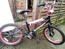 """Girls BMX Bike 20"""" wheels."""