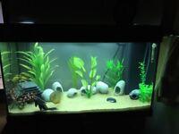 Jewel fish tank 125l