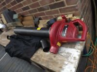 Leaf Blowers & Vacuum
