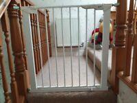 Baby Dan stairgates.