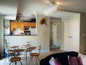 Value! Modern Apartment/Room - Walk to Crows Nest or North Sydney