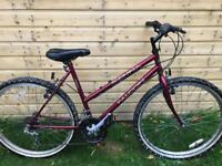 ladies falcon sienna mountain bike