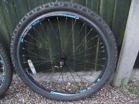 coyote 26 inch mountain bike wheels