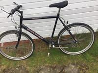 Raleigh mountai bike