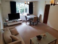 2 bedroom flat to rent (1 bedroom occupied)
