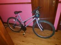 Woman's Push Bike