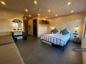 Studio flat in Hotel Suites/Bedsit, East Sussex, BN1 (#1019394)