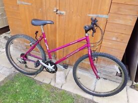 Ladies Dynamic Bicycle in Very Good Condition