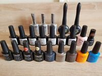 Lacquer Elite99 nail polish bundle 23 pieces
