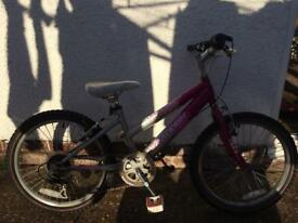 Girls Raleigh bike £25