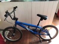Chaos BMX bike