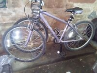 "Grey, ladies, Apollo Comfort 16"" bike. 21 gears. Collect from Thornhill, Scotland"