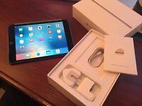iPad Mini 4 Space Grey WIFI 64GB