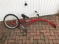 Tag along bike for kids