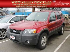 2007 Ford Escape XLT Fixer-Upper (#313)