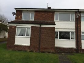 LOVELY 3 BEDROOM SEMI DETACHED HOUSE TO RENT IN HIGH HEWORTH, GATESHEAD