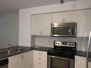 One Bedroom Plus Den Unit Available January 1st